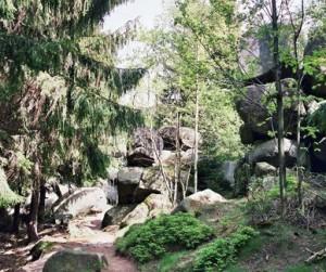Direkt am Wald gelegen, hat das Hotel Waldsegler in Bad Sachsa im Harz seinen Anker gelegt.